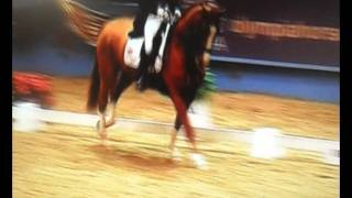 Olympia Dressage 2011 ~ Laura B and Mistral Hojris ~ World Cup Freestyle Qualifier