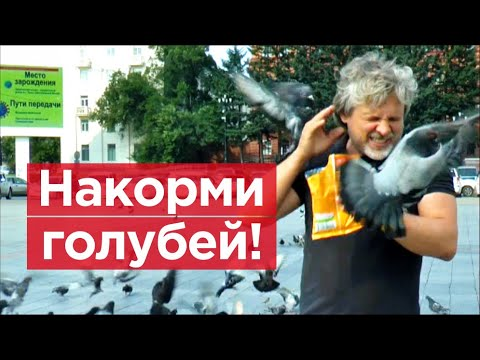 """Кто курирует """"протест"""" в Хабаровске?"""