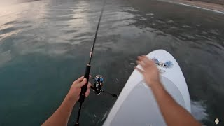 Fishing in the desert goes off!