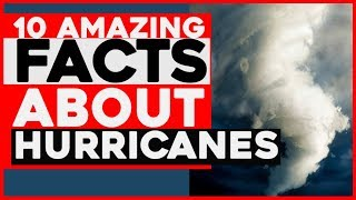 Zapętlaj 10 Amazing Facts About Hurricanes and tornadoes | hurricane facts Wikipedia | tropical Storm , | Dexterous Creations