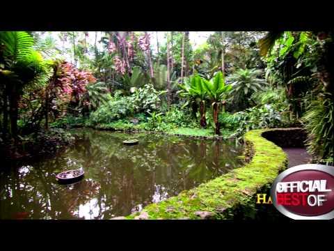 Hawaii Tropical Botanical Garden - Best Botanical Garden - Hawaii 2013