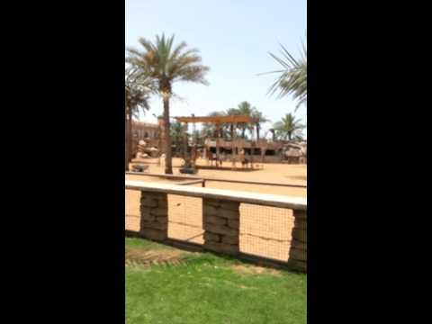 Bebo at emirates park zoo resort.mp4