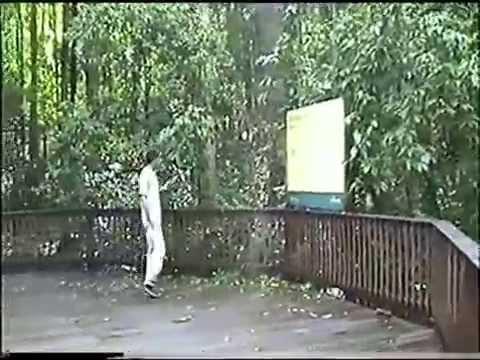 2003 Australië Qld (Curtain Fig Tree.)