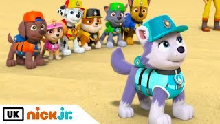 Paw Patrol | Pups Save a Frozen Flounder | Nick Jr. UK
