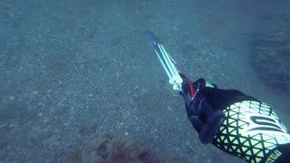 Нетипичная подводная охота.