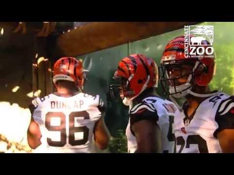 25b0a30f0 Cincinnati Bengals Unveil New Color Rush Uniforms at the Cincinnati ...