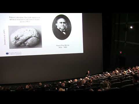 Consciousness and the Birth, Life and Death of the Brain 720p