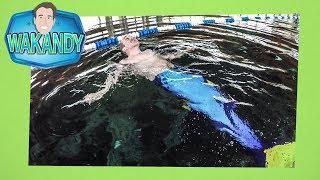 Kan Andy duiken als een échte zeemeermin?   Wakandy