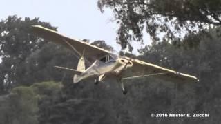 Avión casi queda colgado en los árboles