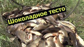 Супер рыболовная насадка ШОКОЛАДНОЕ ТЕСТО Убийца карася