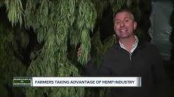 Farmers taking advantage of hemp industry