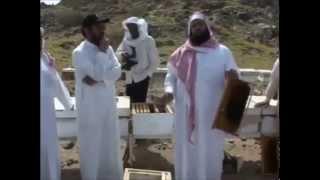 اكثار خلايا النحل بيسر وسهولة 1 - الشيخ فايز القثامي