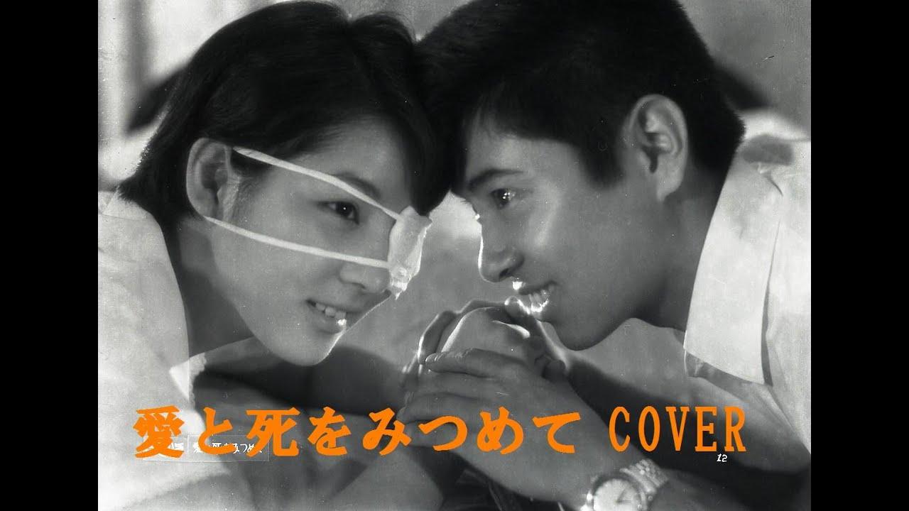 愛と死をみつめて 青山和子 cove...