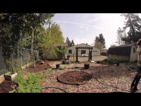 Sanhedrin High School  Garden
