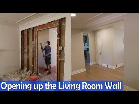 Opening up the Living Room Wall