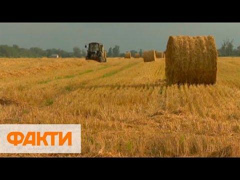Что даст Украине