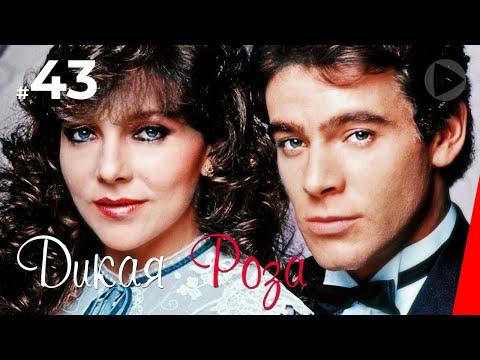 Дикая Роза (43 серия) (1987) сериал