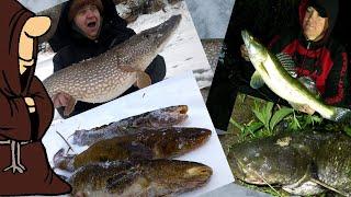 Лучшие моменты рыбалки зимней и летней 2020 щука на жерлицы налим на донки судак на донку сом