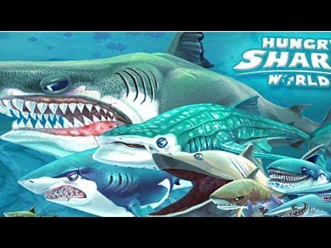 Hungry Shark Hileli En Güçlü Köpek Balığını Aldım