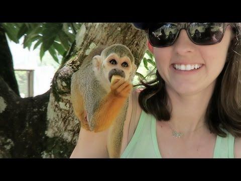 Monkey Land | Dominican Travel Vlog