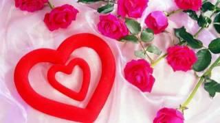 Somali Lyrics - Song - My Love - By Faysal Yare