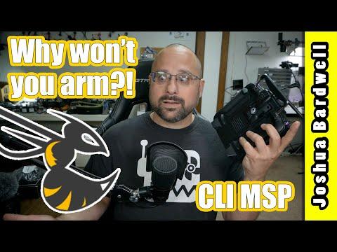 BETAFLIGHT WON'T ARM   CLI MSP arming status flags - YouTube