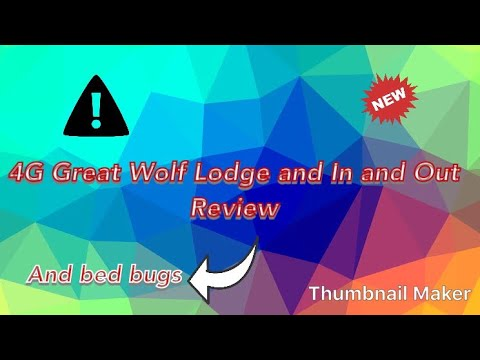 BED BUGS ATTACK at Great Wolf Lodge and In and Out Review