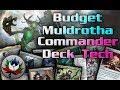 $50 Budget Muldrotha, the Gravetide EDH/Commander Deck Tech - MTG!