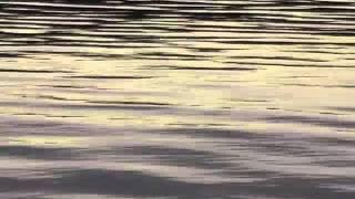 wyrm - lake monster Iceland