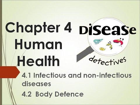 Kssm 2018 Science Form 2 Chapter 4 Youtube