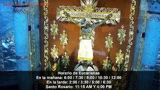 Transmisión en directo de Basílica del Señor de los Milagros