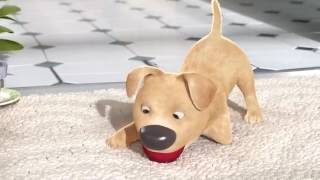 Video An Animated Story of a boy who hates his disabled dog download MP3, 3GP, MP4, WEBM, AVI, FLV Agustus 2017