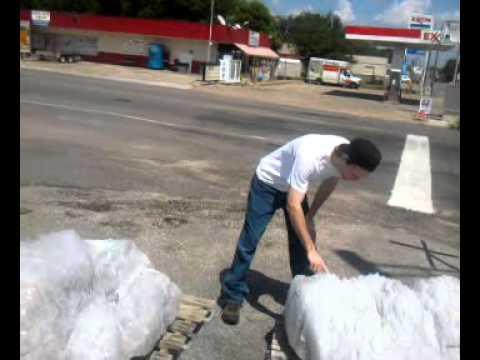 Licking the salt block in Grand Saline Texas