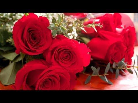 С женским днем 8 марта поздравляю! Красивое поздравление с 8 марта. - Ржачные видео приколы