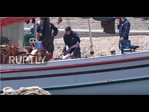 Greece: 16 people drown after dinghy capsizes off Lesbos coast