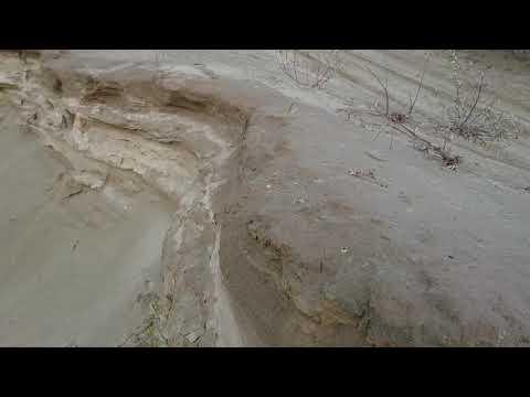 """Берёзовские пески. Пески под г. Берёзовский . Они же Уральская """"сахара""""."""