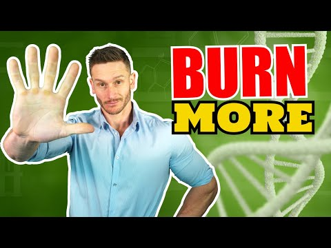 7 Ways to Burn More Fat by Increasing Mitochondria