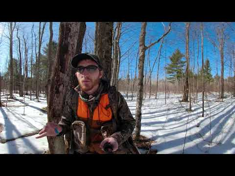 Michigan Coyote Hunting 360 Virtual Reality 2018 - GoPro Fusion Review