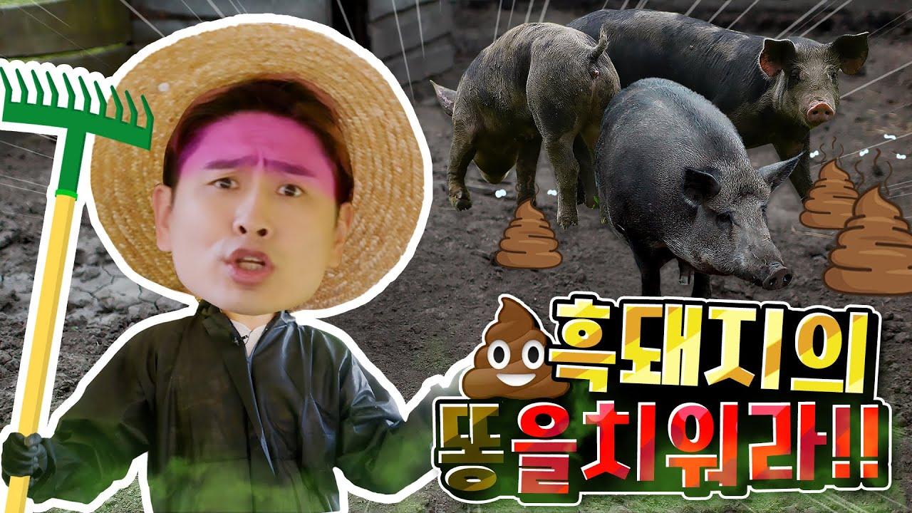 동물 농장에 간 강이, 돼지 우리에 똥을 치워요!! ㅣ KBS TV 유치원