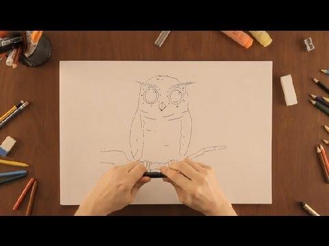 Como Dibujar Un Buho Dibujos De La Naturaleza Youtube