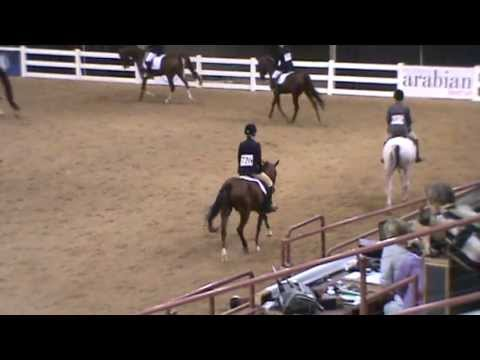 Arabian Sport Horse Nationals 2012 (Kit)