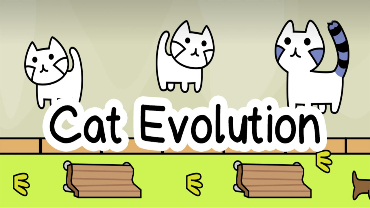 the evolution of cats Industrial designer, ilshat garipov, took his homemade diy cat tower to the people of reddit that is when the design of the tower evolved into something else the cats went from living in a humble cat tower made from wood scraps, to a luxury modular tower complex complete with sheep skin cushions.