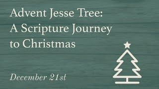 Day 21 | Advent Jesse Tree : A Scripture Journey to Christmas
