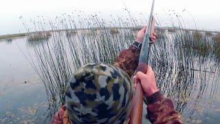 Охота на северных уток.Hunting for a duck
