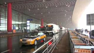 видео Авиакомпании