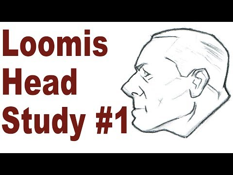 Simple Head Sketching Exercise - Andrew Loomis Drawing Study #1