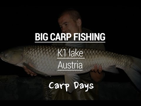 Carp fishing at K1 Lake, Austria - Carpdays.com