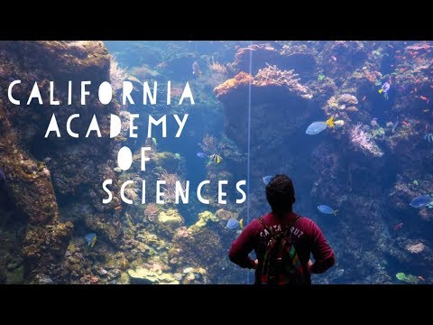 Visit to The Academy of Science