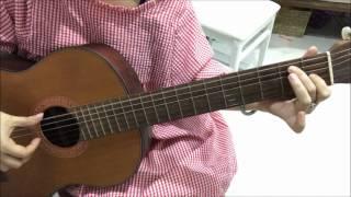 Guitar vasle Domino/Phương Minh Phương