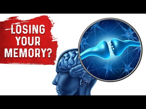 Memory Loss and the Hippocampus: MUST WATCH!